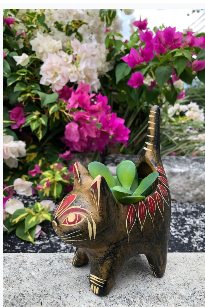 BUI Kitty Planter