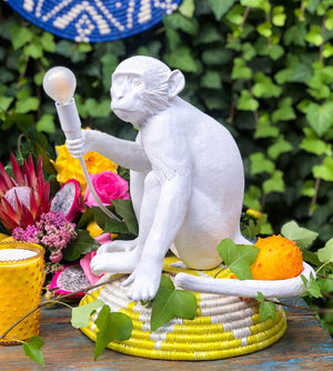 SLTI sitting monkey lamp (curbside only, no shipping) -  - Home Decor - Feliz Modern