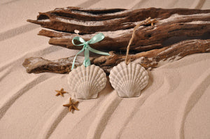 SCALLOP SHELL, SHELL ORNAMENT, SCALLOP SHELL SAND ORNAMENT, TROPICAL SEASIDE ORNAMENT, COASTAL BEACH GIFT, MADE IN FLORIDA, BEACH LOVER GIFTS, BEACH SAND KEEPSAKES, VACATION SOUVENIR, GIFT SHOP OWNERS, PROMOTIONAL ITEMS, PARTY FAVOR, SPECIAL EVENT, COLLECTIBLES, HAND-CRAFTED, FUNDRAISER, BRIDAL SHOWER FAVORS, DESTINATION WEDDING, BEACH WEDDING FAVORS