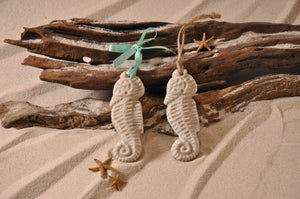 Seahorse Sand Ornament
