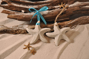 Starfish Sand Ornament