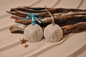 Sand Dollar Sand Ornament