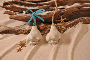 Conch Shell Sand Ornament