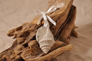TRITON SHELL ORNAMENT, TRITON SHELL SAND ORNAMENT, SHELL SEASIDE ORNAMENT, COASTAL BEACH GIFT, MADE IN FLORIDA, BEACH LOVER GIFTS, BEACH SAND KEEPSAKES, VACATION SOUVENIR, GIFT SHOP OWNERS, PROMOTIONAL ITEMS, PARTY FAVOR, SPECIAL EVENT, COLLECTIBLES, HAND-CRAFTED, FUNDRAISER, BRIDAL SHOWER FAVORS, DESTINATION WEDDING, BEACH WEDDING FAVORS