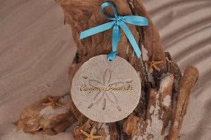 Cayman Island Sand Dollar Ornament