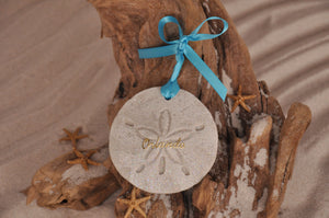 Orlando Sand Dollar Ornament