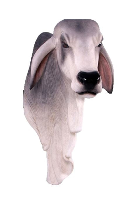 Bull Braham Shoulder Cow Farm Prop Life Size Decor Resin Statue - LM Treasures Prop Rentals