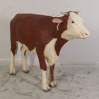Hereford Steer Cow Life Size Statue