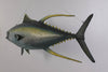 Yellow Fin Tuna Statue Wall Hanging Display