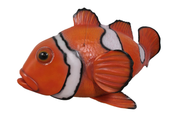 Clown Fish Hanging Over Sized Statue