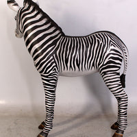 Zebra Foal Safari Prop Life Size Decor Resin Statue