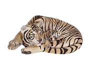 Siberian Tiger With Cub Life Size Statue