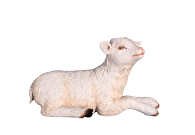 Goat Baby Laying Life Size Farm Resin Prop Statue