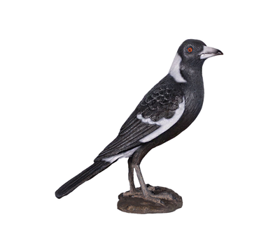 Magpie Bird Life Size Statue Prop
