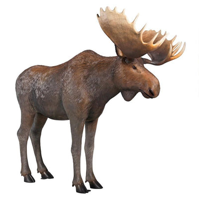 North American Moose Life Size Statue