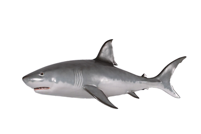 Great White Shark Wall Decor Life Size Statue