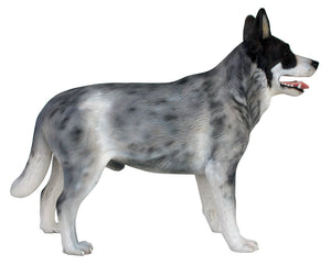Dog Blue Heeler Animal Prop Life Size D̩ecor  Resin Statue