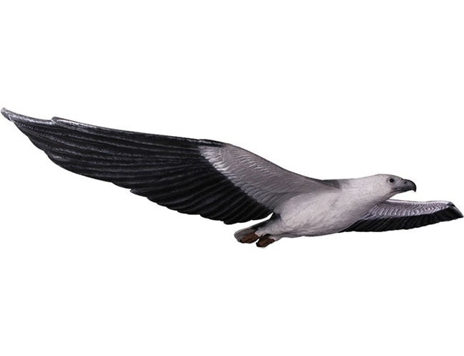 Bird Eagle Flying White Breasted Animal Prop Life Size Resin Statue - LM Prop Rentals