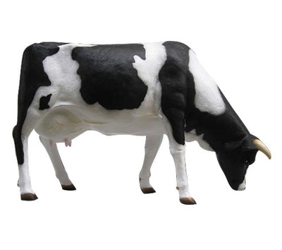 Cow Holstein Grazing Farm Prop Life Size Resin Statue - LM Treasures Prop Rentals