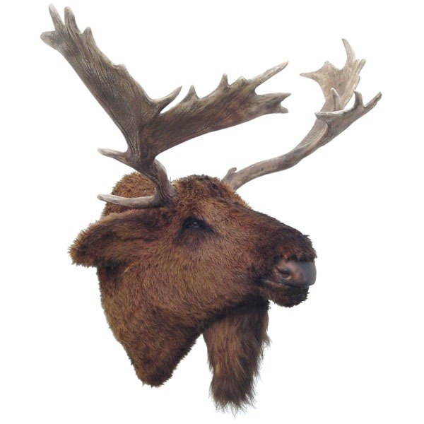 Moose Head Wall Mount Life Size Prop Resin Decor Statue - LM Treasures Prop Rentals