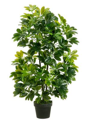 Artificial Foliage Plant Schefflera 3 ft Jungle Safari Prop Decor - LM Treasures Prop Rentals