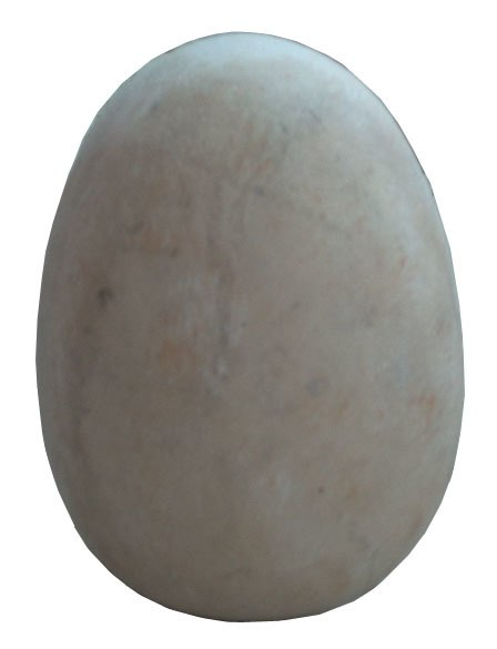 Dinosaur Fossil Egg Large Prehistoric Prop Resin Statue - LM Treasures Prop Rentals