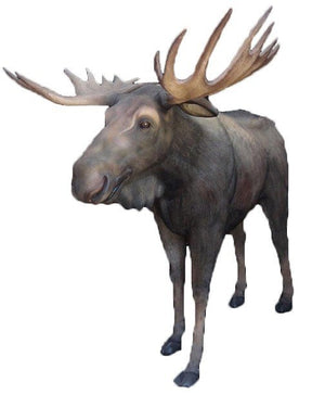 Moose Life Size Prop Resin Decor Statue - LM Treasures Prop Rentals