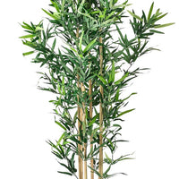 Artificial Foliage Tree Bamboo 5.5 ft Jungle Safari Prop Decor - LM Treasures Prop Rentals