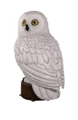 Snow Owl Life Size Statue Prop
