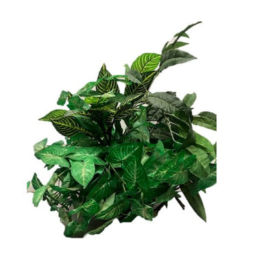 Artificial Foliage Plant 2 ft Table Top Jungle Safari Prop Decor - LM Prop Rentals