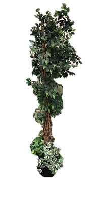 Artificial Foliage Tree Ficus1 6.5 ft Jungle Safari Prop Decor - LM Treasures Prop Rentals