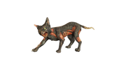 Cursed Cat Life Size Mythical Prop Decor Resin Statue - LM Prop Rentals