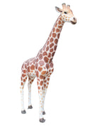 Giraffe 8 ft Safari Prop Resin Decor Statue - LM Treasures Prop Rentals