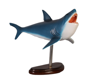 Baby Great White Shark On Base Life Size Statue