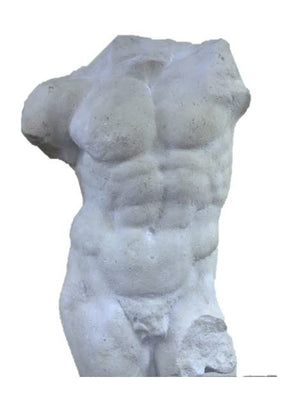 Torso Stone Andrea Male Greek Roman Prop Resin Decor - LM Treasures Prop Rentals
