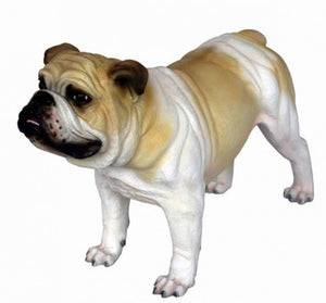 Dog Bulldog Tan Animal Prop Life Size D̩ecor Resin Statue - LM Treasures Prop Rentals