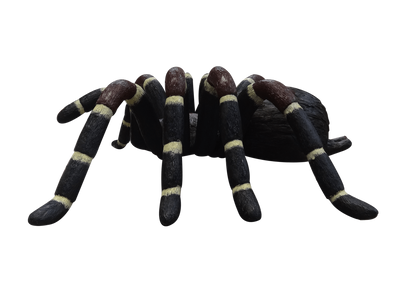 Insect Spider Tarantula Over Sized Bug Prop Resin Decor Statue - LM Treasures Prop Rentals