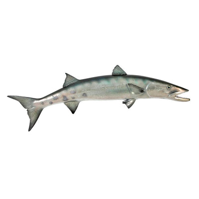 Barracuda Fish Hanging Life Like Ocean Prop Resin Statue