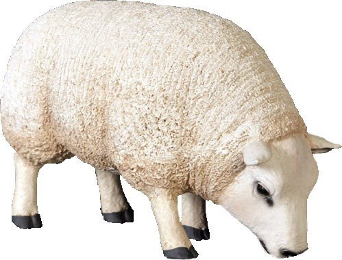 Sheep Ewe Texelaar Baby Head Down Farm Prop Resin Decor Statue - LM Treasures Prop Rentals