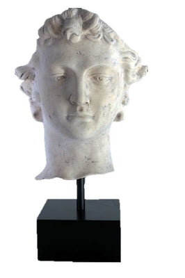 Stone Head David on Base Greek Roman Prop Resin Decor - LM Treasures Prop Rentals