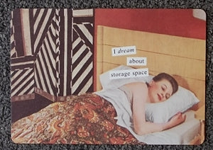 "Anne Taintor Postcard with Magnet ""I dream about storage space"""