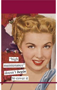 Anne Taintor Mini Notes/High Maintenance