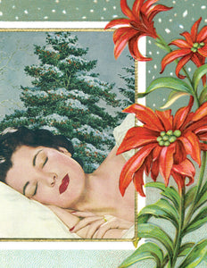 Anne Taintor Boxed Holiday Cards-nap