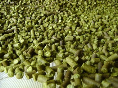 2018 Crop Chinook Hops - Dried, Pelleted