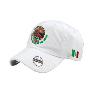 Mexico Vintage hats with Mexican Flag and Shield-