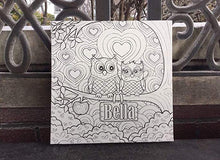 Personalized Coloring Canvas, Owl Design With Name Of Choice, Great Gift