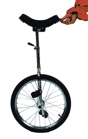 Unicycle - Willow Manor Shop
