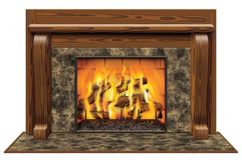 INSTA-VIEW FIREPLACE SCENE