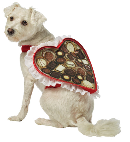 Box of Chocolate - Pet Costume
