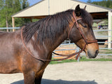 Bitless braided noseband DP Soft Fell headstall